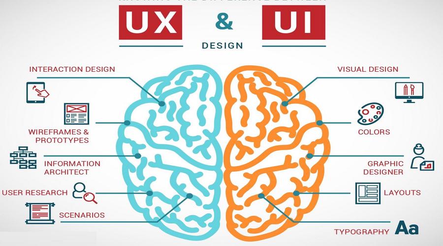 cerveau UX UI -kwuillot